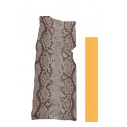 Serpent Python Bleu, gris et marron