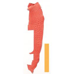 Peau Flanc de Crocodile Rouge Tomate